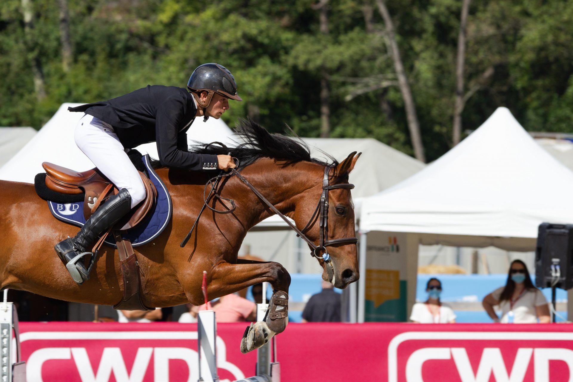 equestrian albania