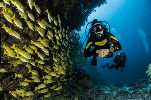 diving albania